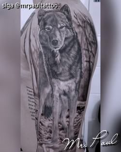 Lobo realismo tattoo mrpaul dermographic