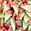 Thumbnail: Christmas Sweets