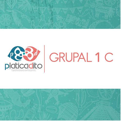 GRUPAL 1 C