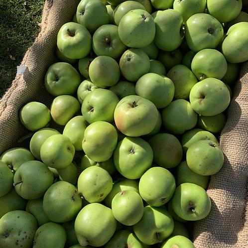 Bramley Cooking Apples (KG)