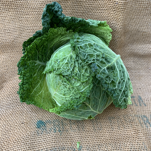 Seasonal Cabbage