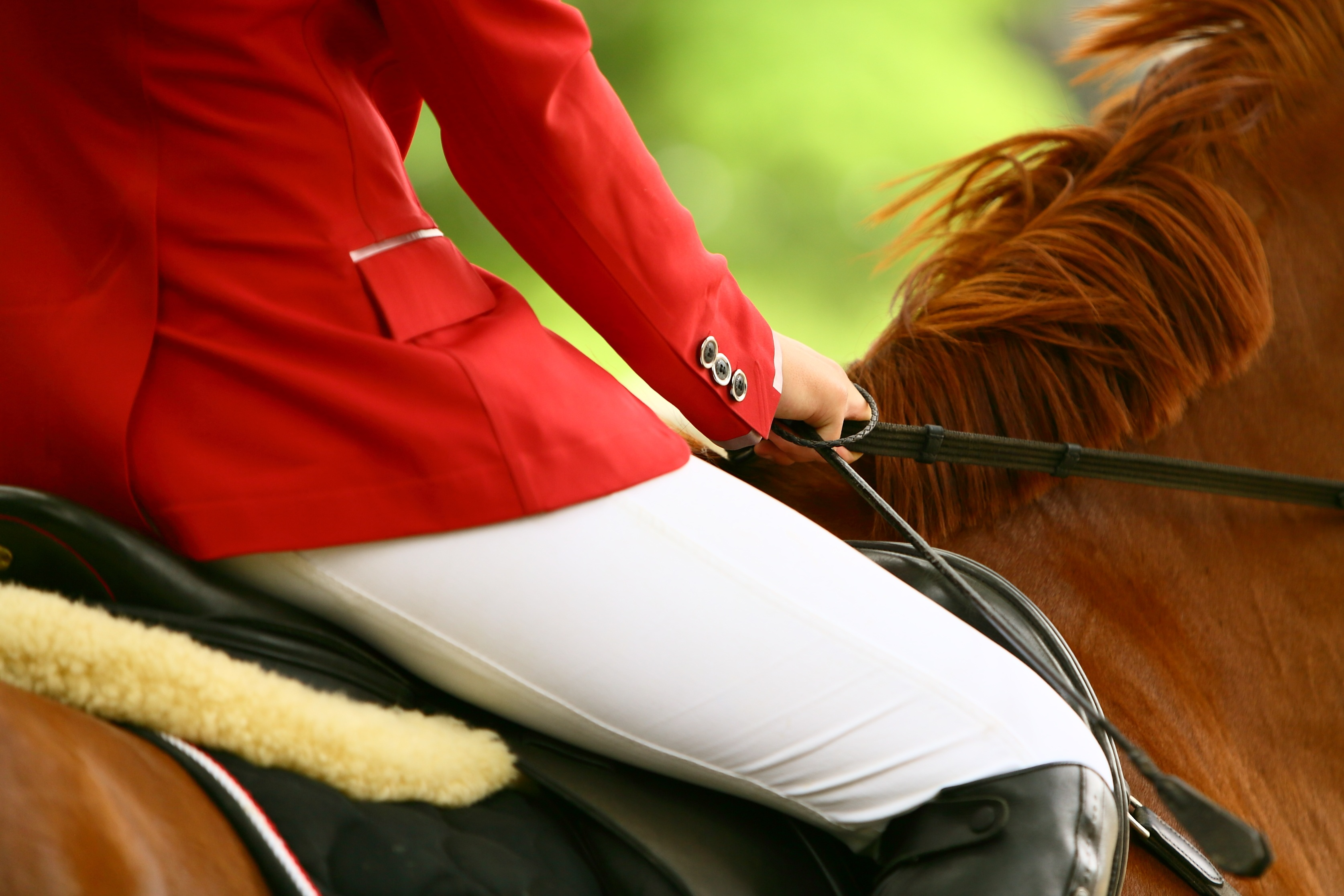 Trade Stands Hickstead : Heading to hickstead? in the country magazine showcasing all