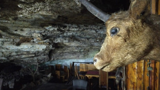 Monastery Cave Restaurant - Matka