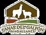 LOGO-lanas-del-galpon-2 (1).png