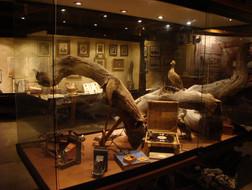 Museo_Raíces_de_un_Pionero.JPG