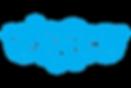 Skype-Logo.0.png