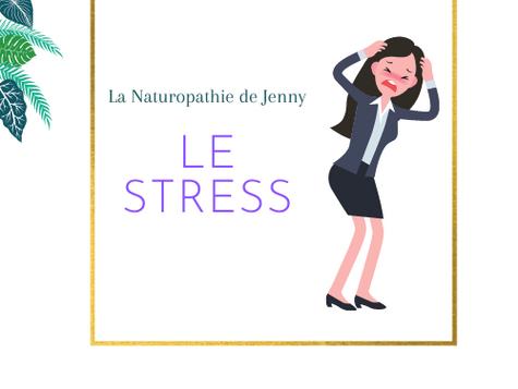 Le stress, moteur de la vie?