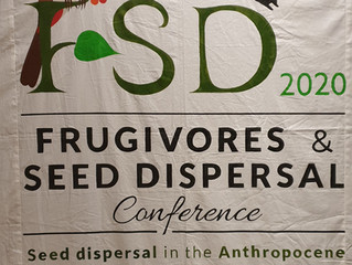 FSD meeting in India