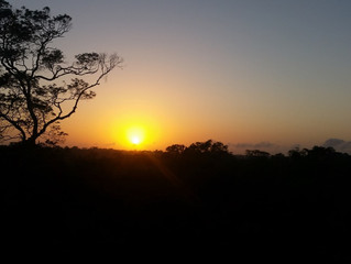 Greeting the sun at Caxiuana