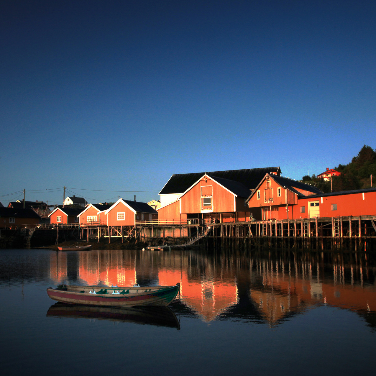 Lofotenhouses