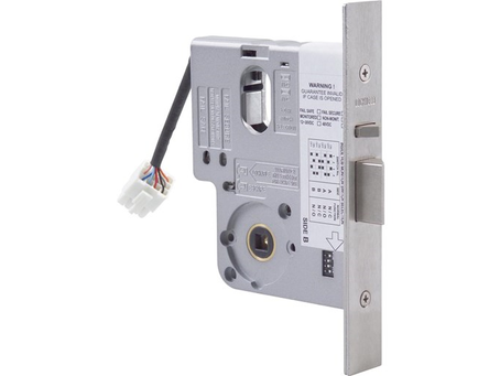 Electronic Access Locks and Digital Keypads