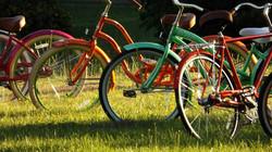 Bicycles to enjoy!