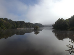 Misty morning views.