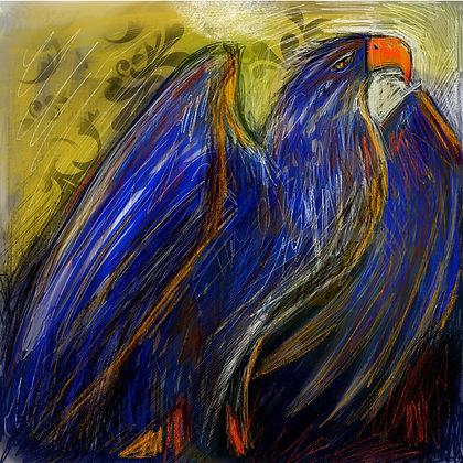 blue eagle 50 x 50 cm