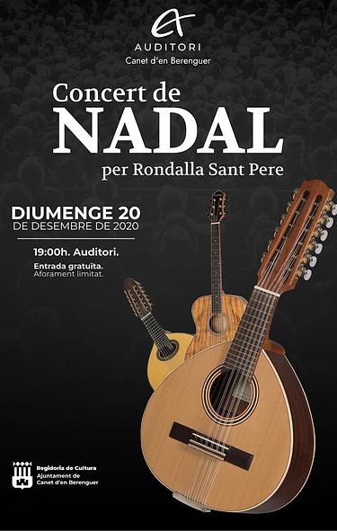 CONCIERTO DE NAVIDAD - 20 DICIEMBRE.png