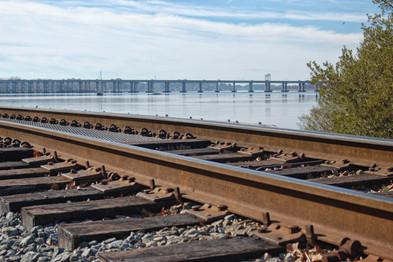Trent River Tracks