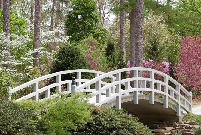 Spring's Bridge