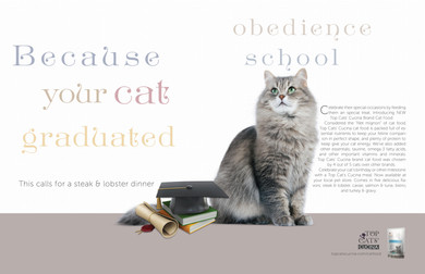 Double page spread for new 'special occasion' cat food.