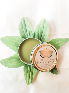 open tin with leaves.JPG