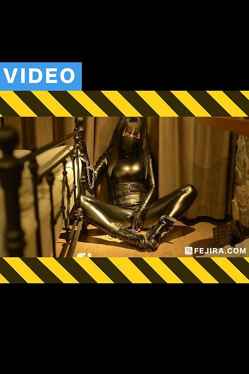 VIDEO FT-004