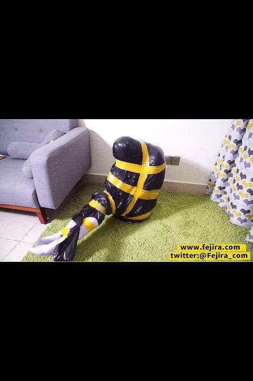 VIDEO FSS-Z001A