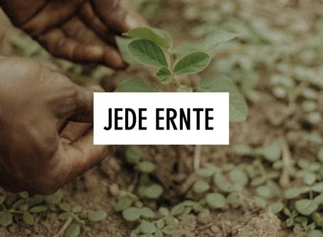 Jede Ernte – ein kleiner Sieg