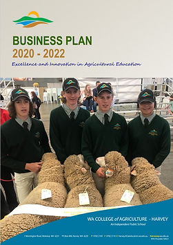 Business-Plan.jfif
