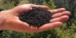 fertilizzanti certaldo - granuli fertilizzanti certaldo