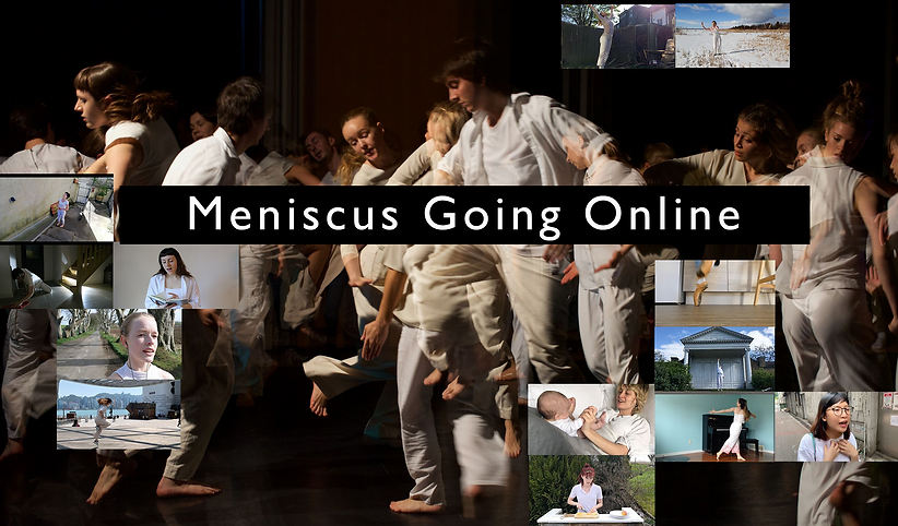 Meniscus_go_poster_gill.png