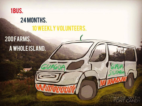 Resilience on Wheels 🚐🌿: Our Solidarity Gets into Gear  🌞