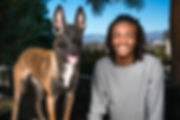 Indigo and K9-INDIGO Baby movie dogs TV dog belgian malinois