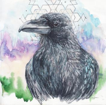 Raven Medicine, 2018.