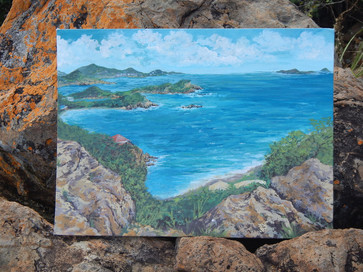 Talking Rock, Water Island, USVI, 2013.