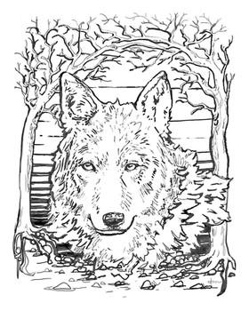 Wolf Medicine (linework), 2016.