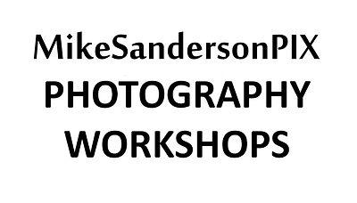 Workshops Button02.jpg