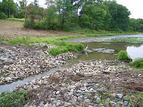 Large Dam Repair - Before 2.jpg