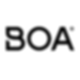 Boa_Primary_Logo_Black.160×160-1.png