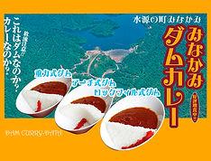 dam-curry.jpg