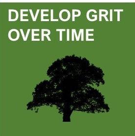develop grit over time.jpg