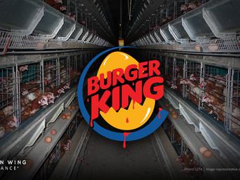 Burger King, prestanite podržavati zlostavljanje kokoši!