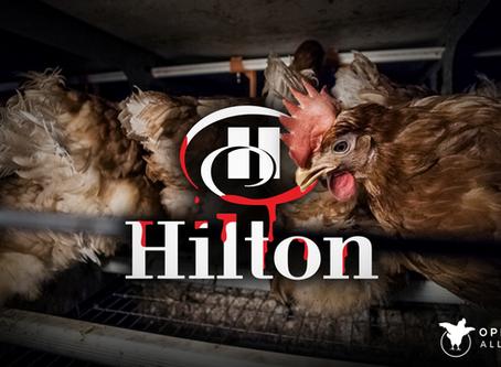 Pokrenuta globalna kampanja protiv Hiltona i Best Westerna