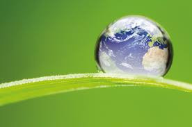 Globalni pokret za ukidanje kaveza i klimatske promjene - priopćenje medijima povodom Dana Zemlje