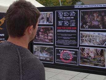 Cage-free  inicijativa na osječkom Trgu Slobode