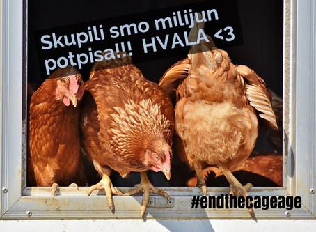 Skupljeno milijun potpisa za End the cage age; potpisi se i dalje skupljaju