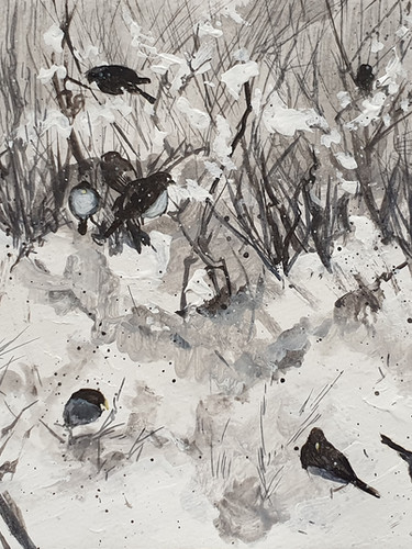 Black birds in the snow_ winter in Toron