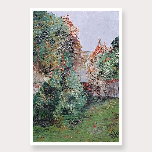 Backyard After Rain | Home