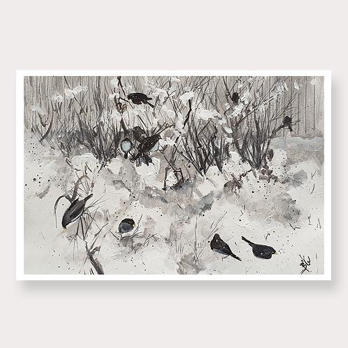 Black Birds in the Snow