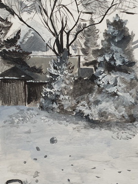 A snowy afternoon _ Winter in Toronto_B'