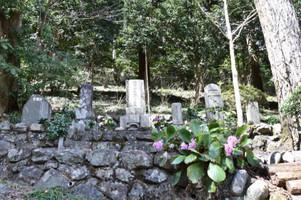 南沢家のお墓