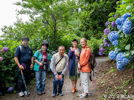 7月7日 満開の南沢あじさい山に行ってきました